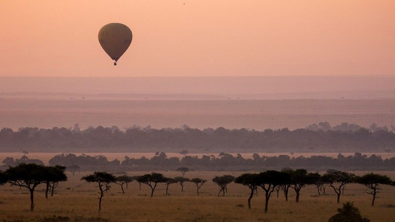 Fede Kenya rejser til en god pris her online