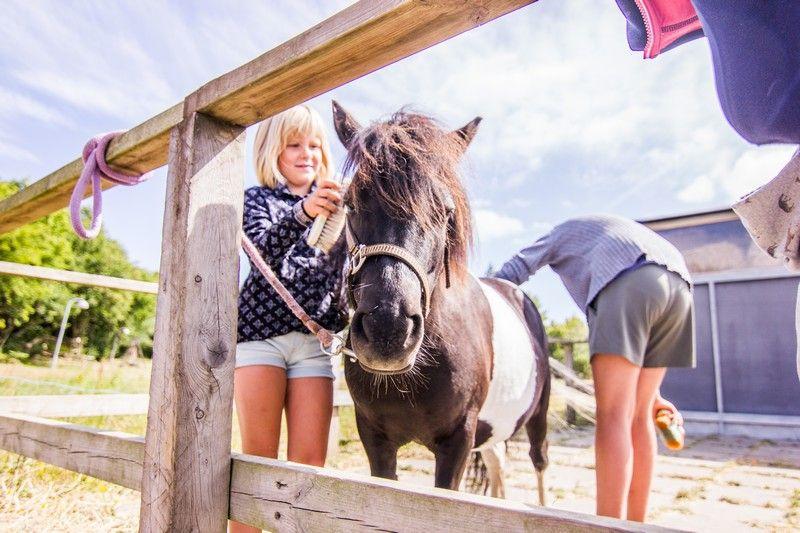 Tag på campingferie i Skive i det smukke Nordjylland
